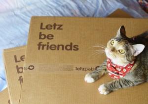Eu e a minha Letzpets, a minha Letzpets e eu