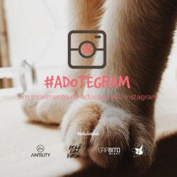 #ADOTEGRAM – Um Movimento incrível de Adoção pelo Instagram
