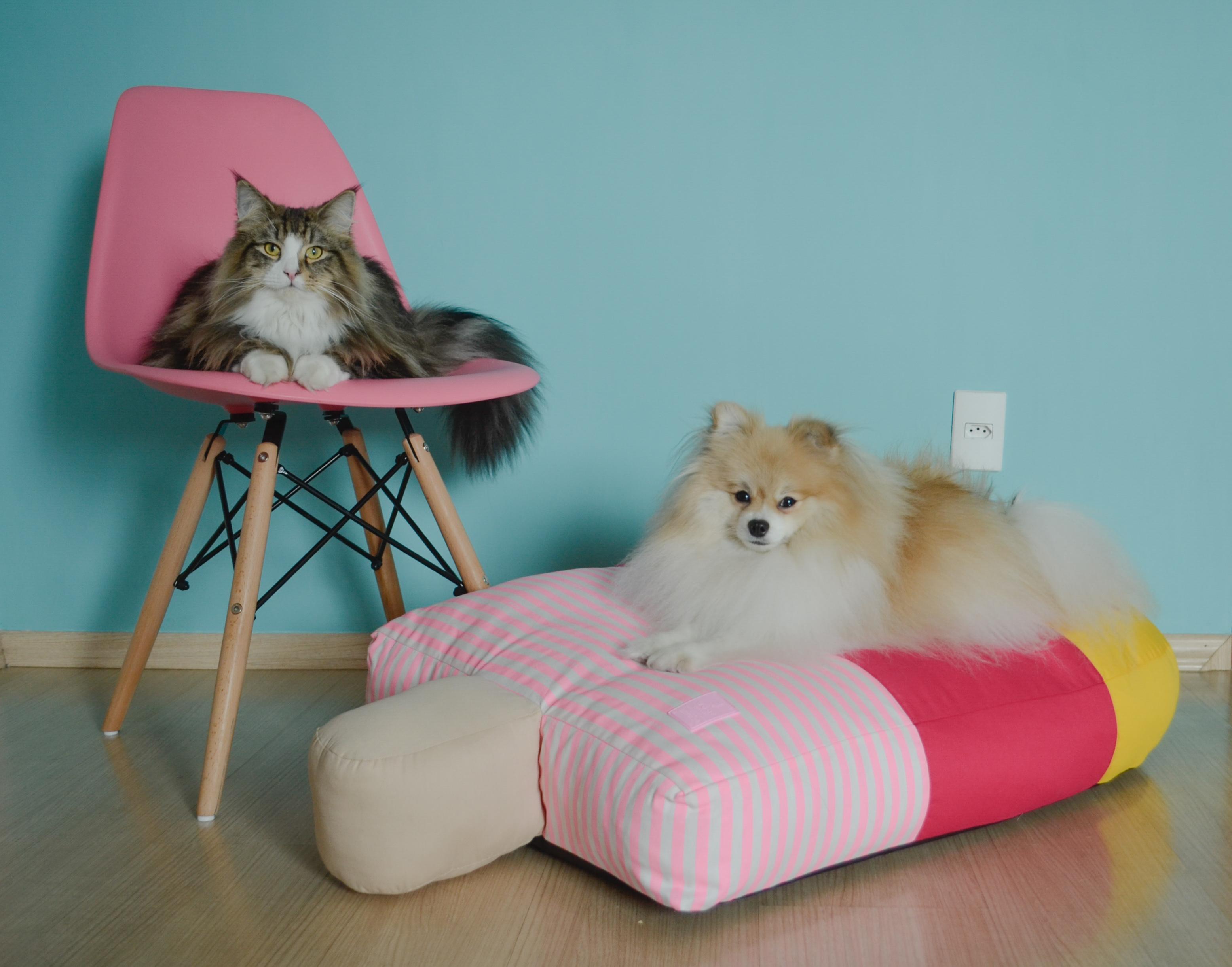 Melhores opções de móveis para casas com pets