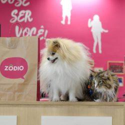 Conheça a Casa Pet, o Cantinho mais Especial da Zôdio