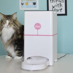 Agende as Refeições do seu Pet por Aplicativo